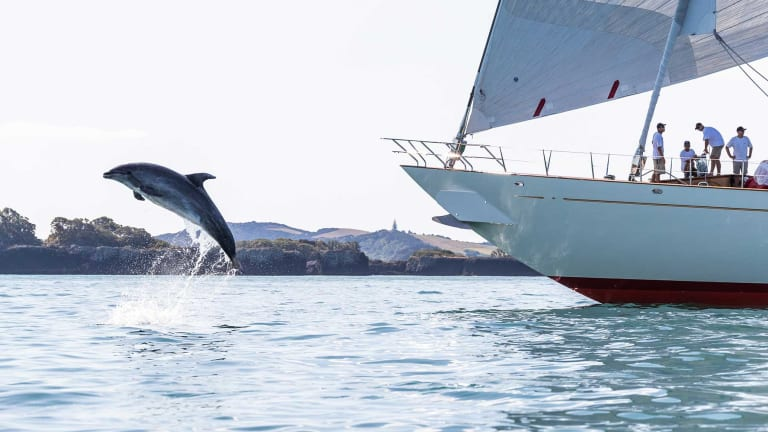 Benetti Sponsors New Zealand Millennium Cup Joining forces with Live Ocean