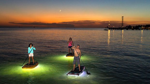 NocquaLEDPaddleboards-1