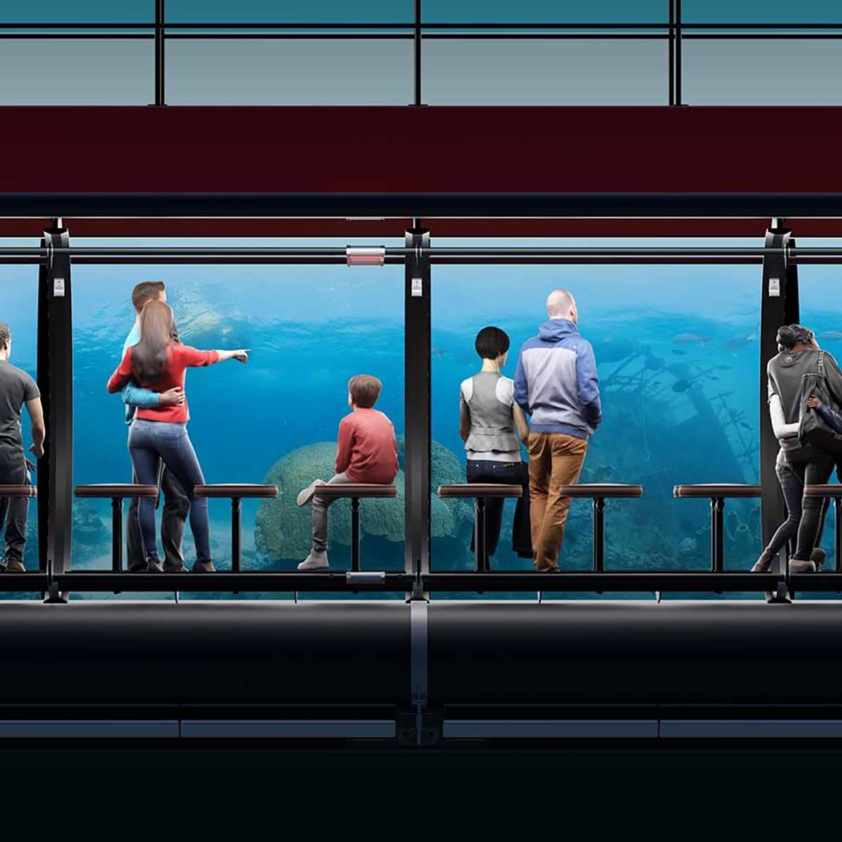 Triton Submarines' new submersibles - Yachts International