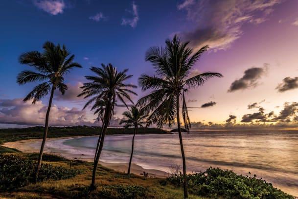 RHMB_Beach03