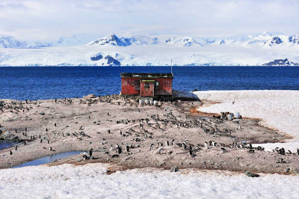 33-Mikkelsen Harbour on Trinity Island where Gentoo pinguins nest close to an old whale station-DSX_2095