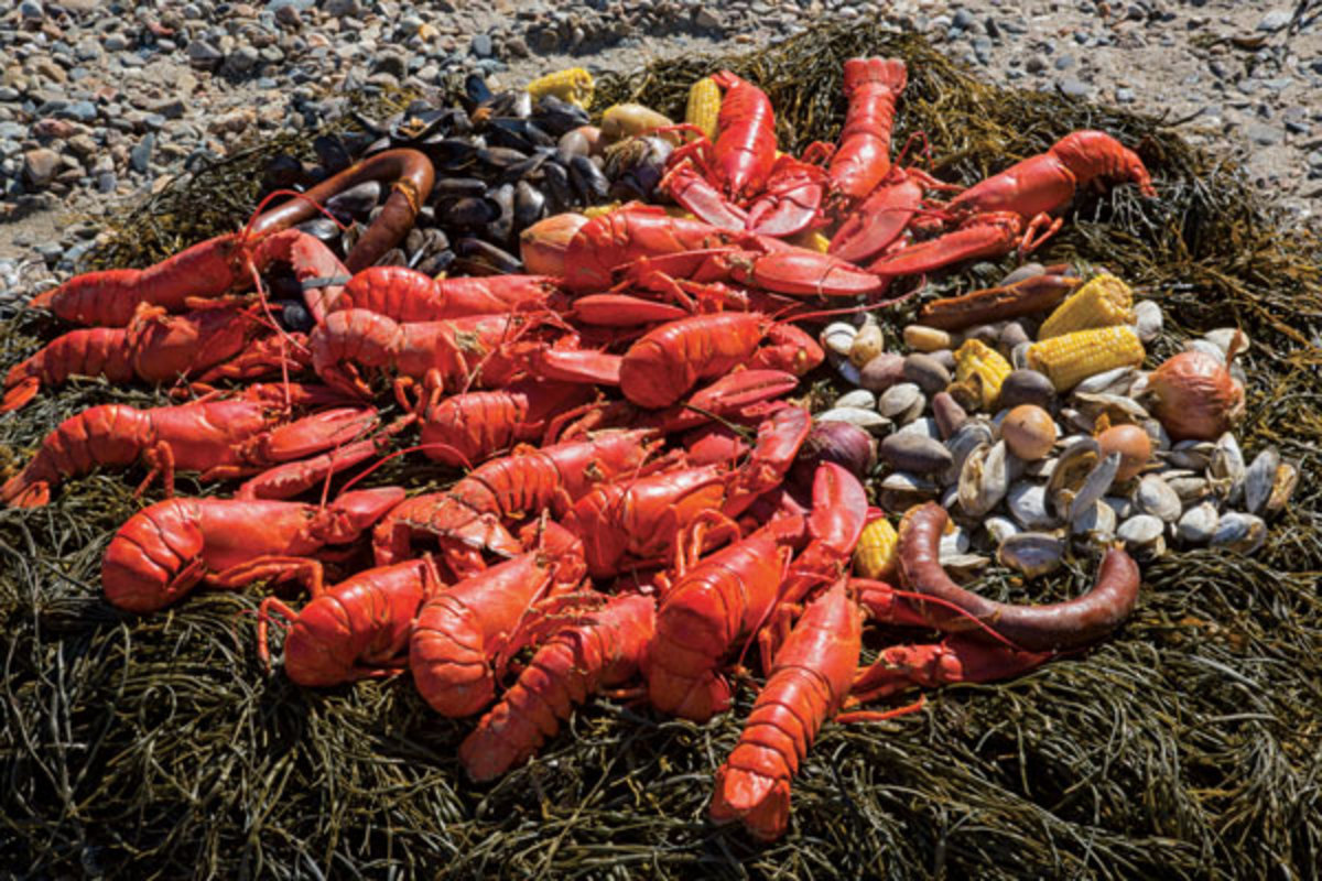 Credit - Billy Black; Captain Russell's beautiful and delicious lobster boil on the beach is a trip highlight