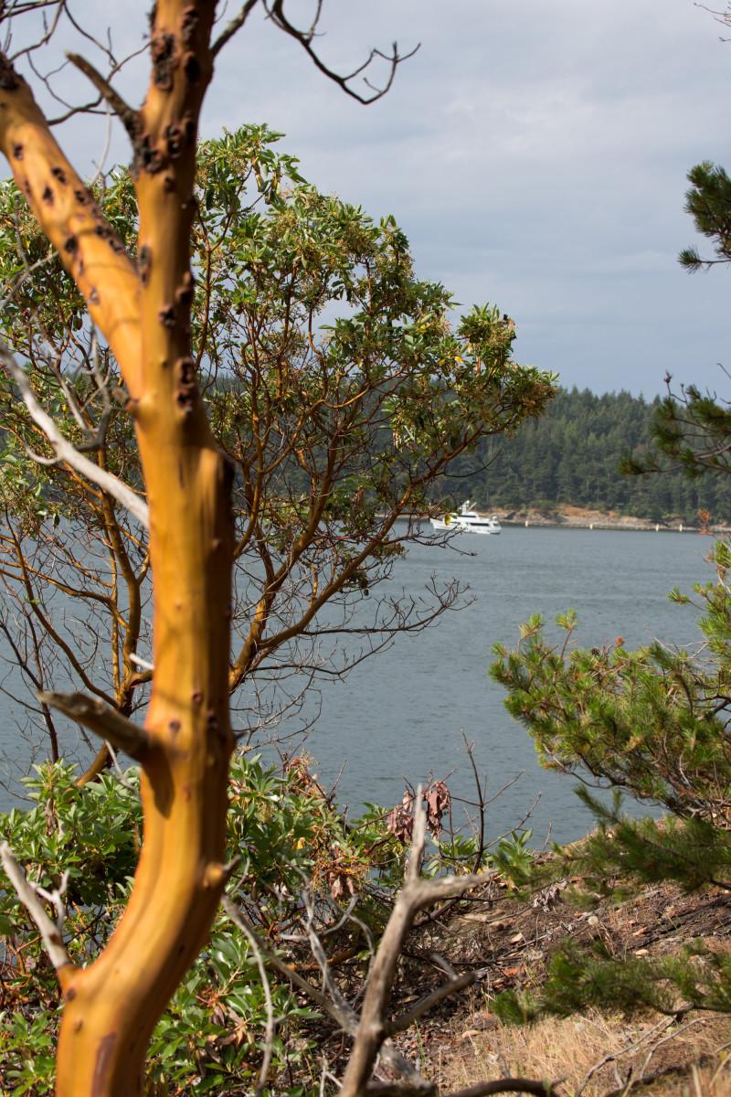 M/Y Jamal, anchored in Sucia Island's Echo Bay.