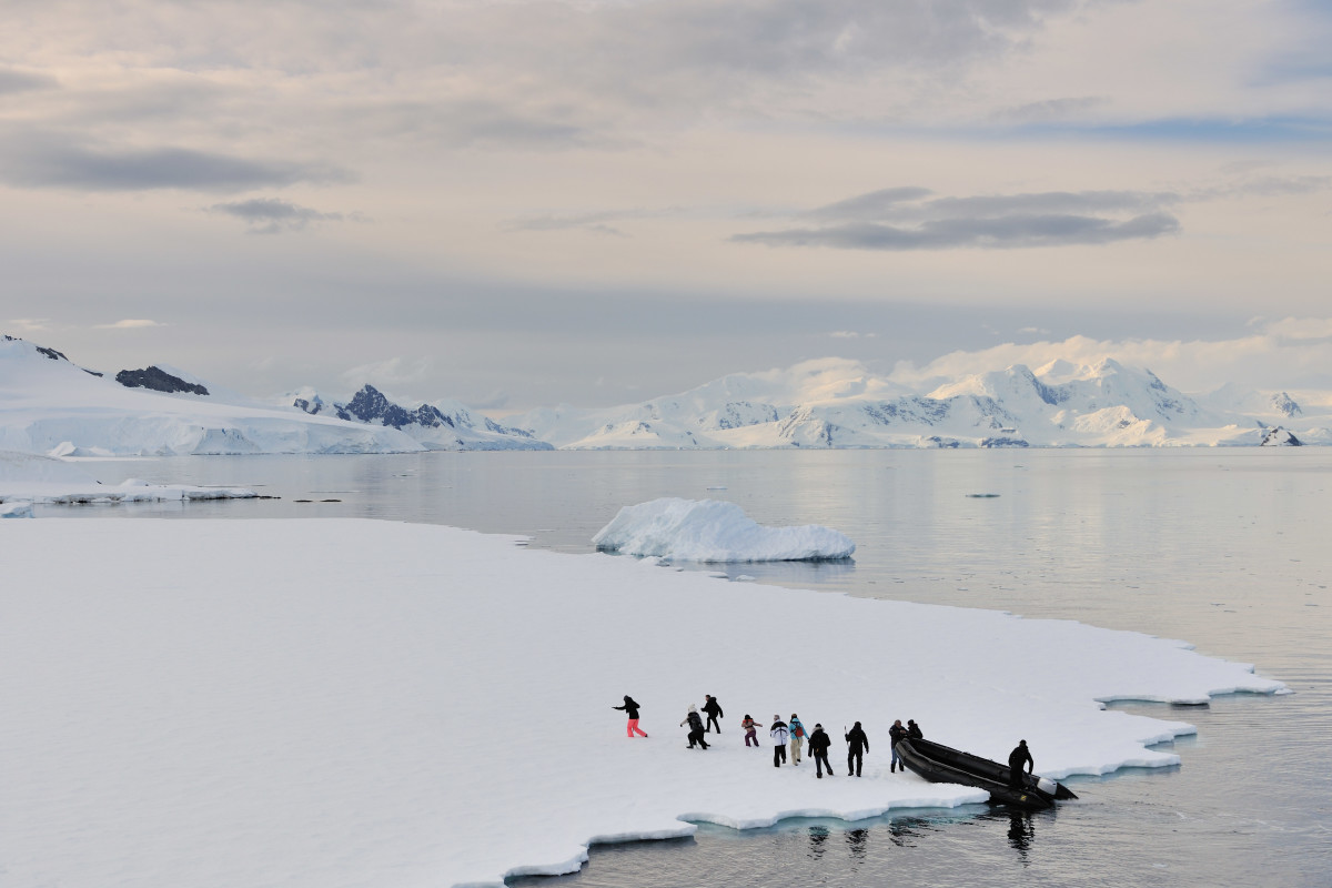Landing on a sheet of ice, guests explore the polar fauna and flora on the still bay.