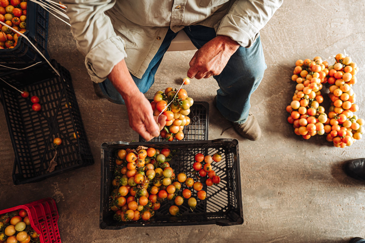 The southern region of Puglia is known for its dedication to everything slow and proudly committed to traditional agriculture and fishing practices.