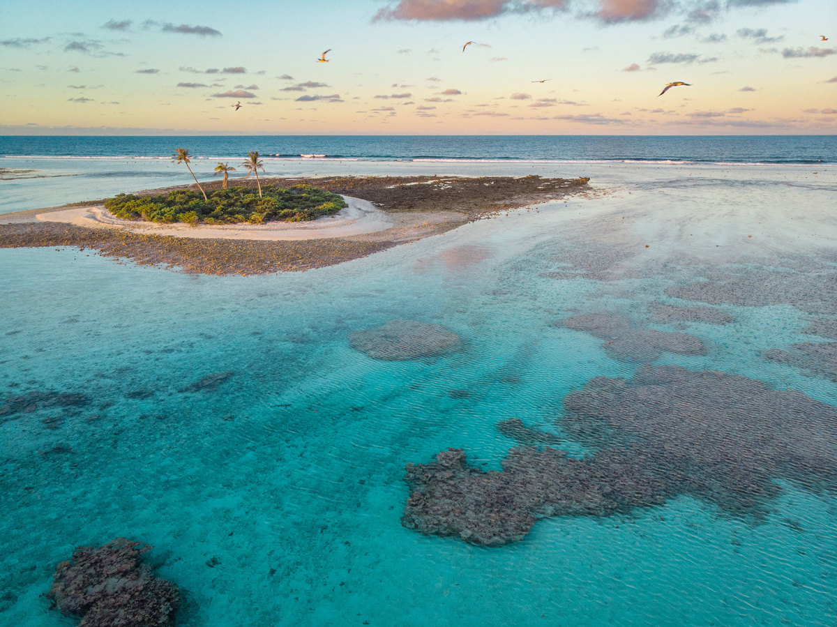 The outer reef of the Gambier archipelago is dotted with motus, which are small islands made of coral and sand that host seabirds and a few intrepid palm trees.